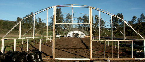 a metal frame is best for large greenhouses
