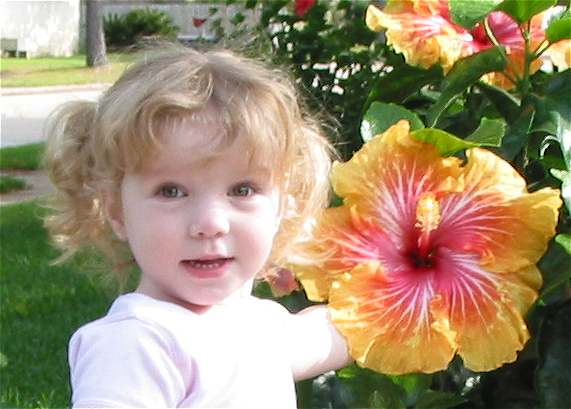 hibiscus and little girl